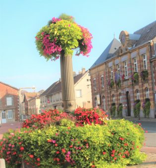 fleur Pl Mairie 19-09-20 Maubert 1.jpg 1